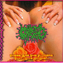 "Orifice - ""These are the Flowers I Love to Smell"""