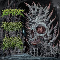 Cover art for International Solidification Split