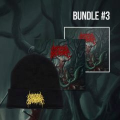 Bundle 3 contains the CD, a sticker, and a black toque