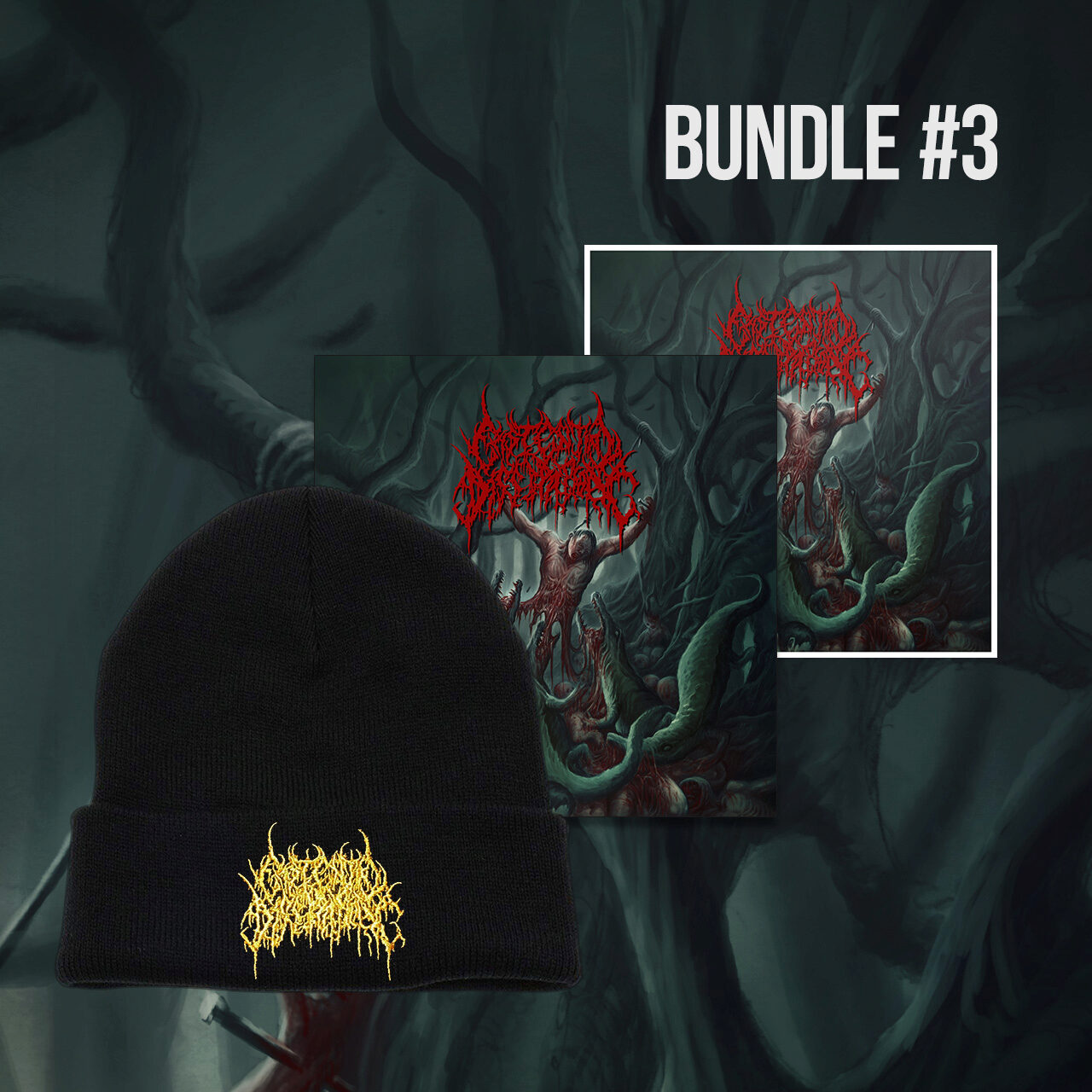 Bundle 3 contains the CD, a sticker, and a black toque